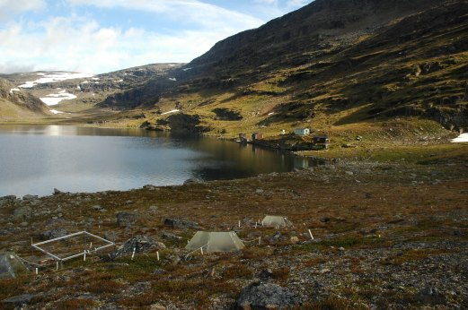 Latnjajaure arctic field station